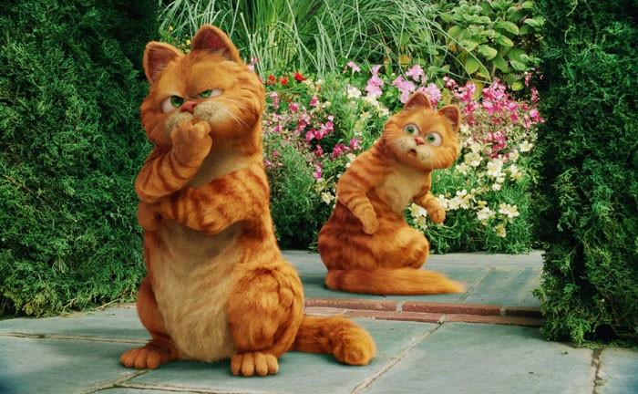 Garfield A Tail Of Two Kitties Free Online Movies Tv Shows At Gomovies